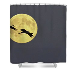 Moonlight Flight Shower Curtain