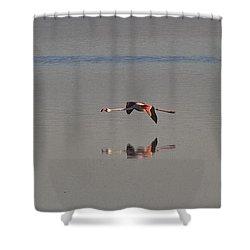 Fly Fly Away My Pretty Flamingo Shower Curtain by Heiko Koehrer-Wagner
