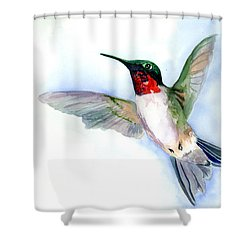 Fly Free Shower Curtain