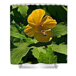 Flying Bee And Wood Poppy Shower Curtain by Byron Varvarigos