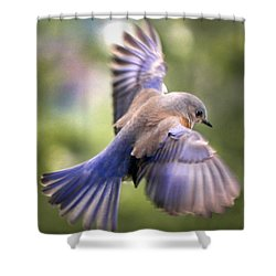 Flying Bluebird Shower Curtain