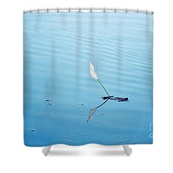 Flying Feather Boat Shower Curtain