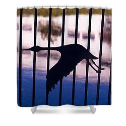 Flying Fence Shower Curtain by Tara Lynn