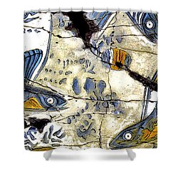 Flying Fish No. 3 - Study No. 2 Shower Curtain