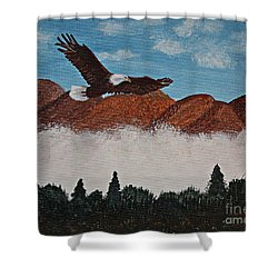 Flying High Shower Curtain by Barbara Griffin