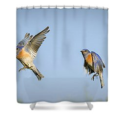 Flying Shower Curtain by Jean Noren