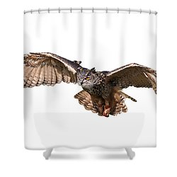 Flying Owl Shower Curtain
