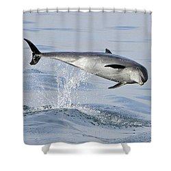 Flying Sideways Shower Curtain