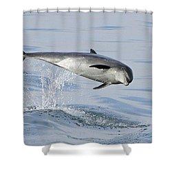 Flying Sideways Shower Curtain by Shoal Hollingsworth