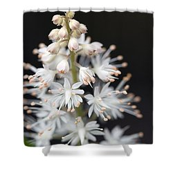 Foam Flower Shower Curtain by Melinda Fawver