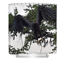 Focused On Prey Shower Curtain
