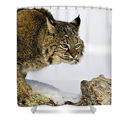 Focusing Shower Curtain by Jack Milchanowski