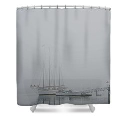 Fogged In Shower Curtain