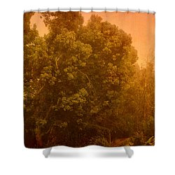 Foggy Drizzly City Morning Shower Curtain by Angela A Stanton