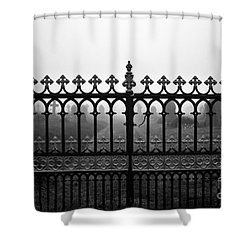 Foggy Grave Yard Gates Shower Curtain by Terri Waters