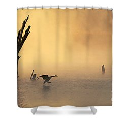 Foggy Landing Shower Curtain