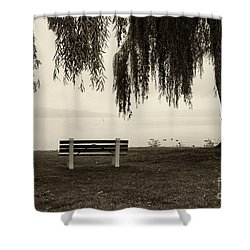 Foggy Morning At Stewart Park Shower Curtain