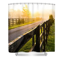 Foggy Morning Shower Curtain by Shelby  Young