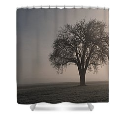 Foggy Morning Sunshine Shower Curtain