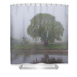 Foggy Elbe Tree Shower Curtain