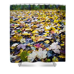 Shower Curtain featuring the photograph Foliage by Sebastian Musial