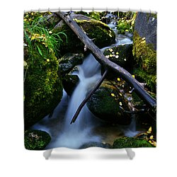 Shower Curtain featuring the photograph Follow Me by Jeremy Rhoades