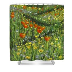 Poppy Trail Shower Curtain