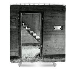 Follow The Light Shower Curtain by Karen Wiles