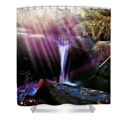 Follow  The Light Shower Curtain by Peggy Franz