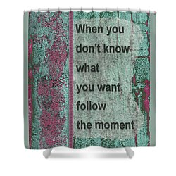 Follow The Moment Shower Curtain by Gillian Pearce