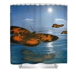 Follow The Sun Shower Curtain by Jack Zulli
