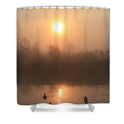 Follow Us Shower Curtain by Linsey Williams