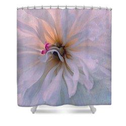 Shower Curtain featuring the photograph Romance by Jean OKeeffe Macro Abundance Art