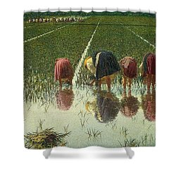 For Eighty Pennies Shower Curtain by Angelo Morbelli