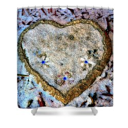 Shower Curtain featuring the photograph For The Love Of Winter by Deena Stoddard