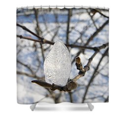 Shower Curtain featuring the photograph For You by Jane Ford
