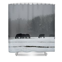 Shower Curtain featuring the photograph Foraging by Glenn Gordon