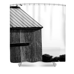 Foraging Two Shower Curtain