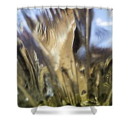 Shower Curtain featuring the photograph Forbidden Forest by Martin Howard