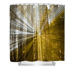 Forest Abstract Shower Curtain by Vivian Christopher