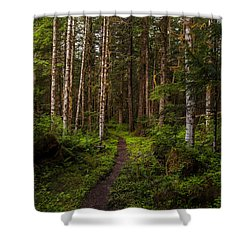 Forest Alder Path Shower Curtain by Mike Reid