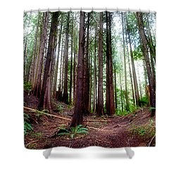 Forest Shower Curtain by Adria Trail