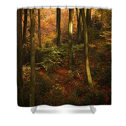 Forest Deep No. 2 Shower Curtain by Richard Cummings