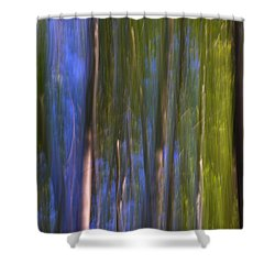 Forest Dreams Shower Curtain by Guido Montanes Castillo