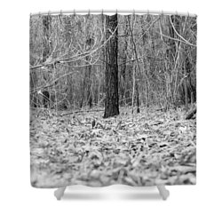 Forest Floor Black And White Shower Curtain