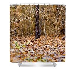 Forest Floor Shower Curtain