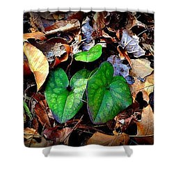 Shower Curtain featuring the photograph Forest Flora by Tara Potts