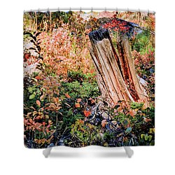 Forest Floral Shower Curtain
