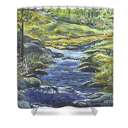 Shower Curtain featuring the painting Forest Glen Brook by Carol Wisniewski