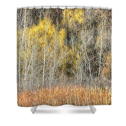 Forest In Late Fall At Scarborough Bluffs Shower Curtain by Elena Elisseeva